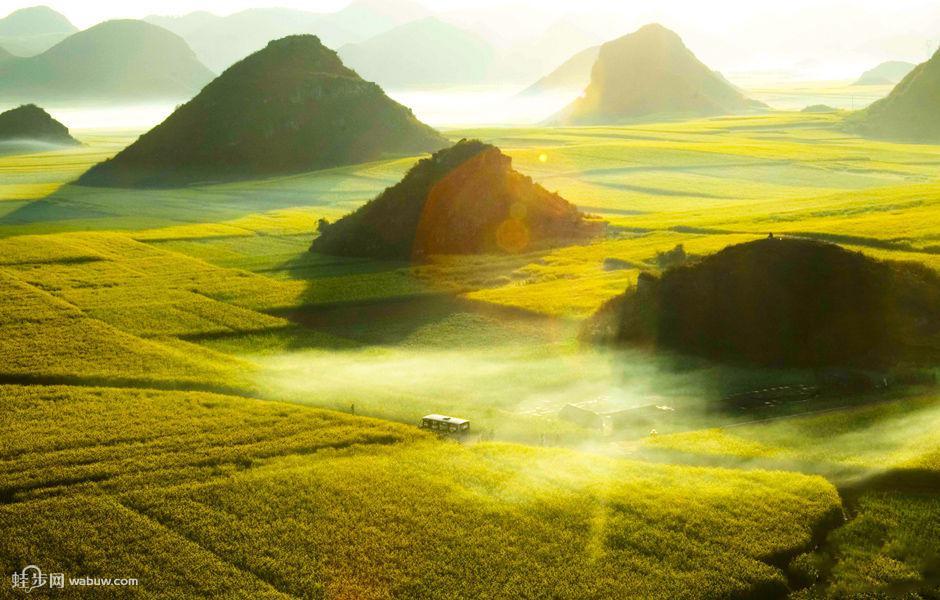 经典一日游:欣赏罗平最经典的风景:瀑布和油菜花